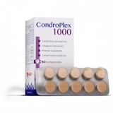 Condroplex 1000 - 60 cápsulas