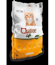 Quatree Life Gatos Castrados 20kg
