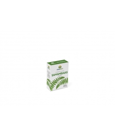 Fertilizante Mineral Misto para Samambaias 150g