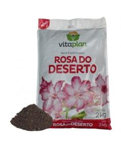Terra Especial Rosa do Deserto Vitaplan 2kg